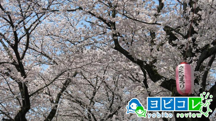 松戸の予備校2019年人気13選!大学受験塾の評判・口コミランキング