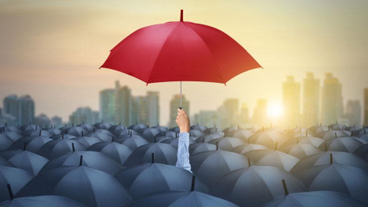 特徴的な傘