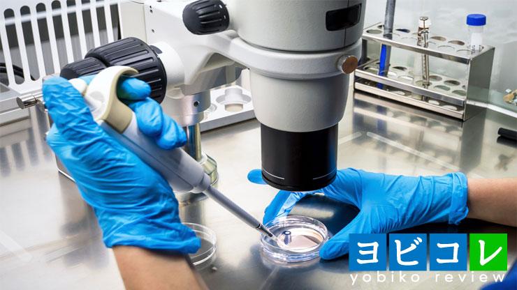 顕微鏡で培養する