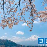 富士周辺の予備校2021年人気19選!大学受験塾の評判・口コミランキング