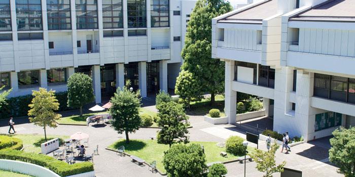 横浜商科大学 学部
